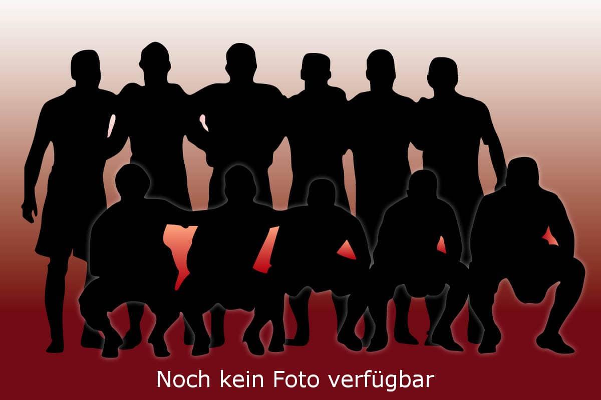 Mannschaftsfoto der Bambinis des VfB Linz - Saison 2018/2019