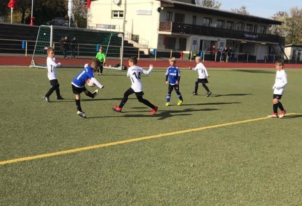 VfB Linz - HSV Neuwied